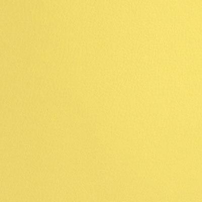Желтый, экокожа