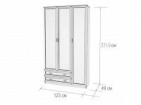 Шкаф 500-107011