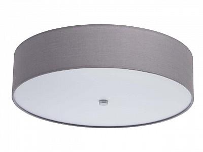 Настенно-потолочный светильник 500-109841